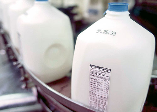 Factory gallon milk on conveyor