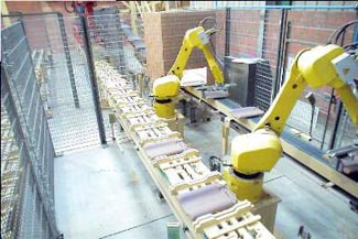 Ceric Automation France using cognex vision guided robot arms