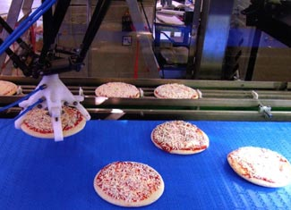 cognex machine vision guiding robot arm picking Panidea pizzas