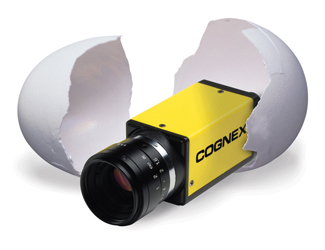 Cognex In-Sight 8000 Micro Egg