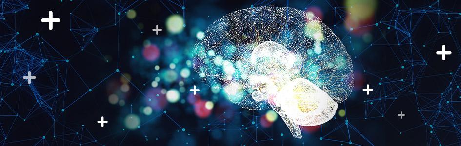 deep learning glossary brain