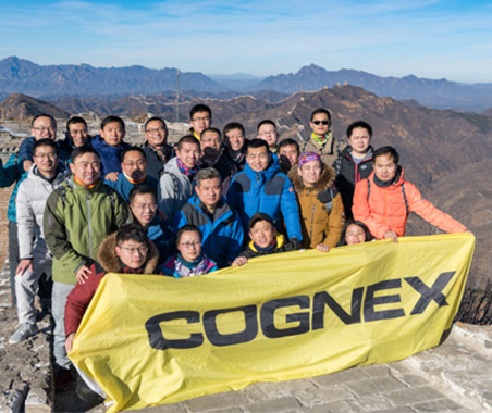 Cognex Cognoids great wall of China
