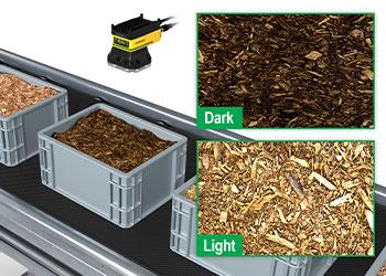 Aparas de madeira em bolsas sendo inspecionadas em um transportador