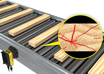 Lumber planks being inspected on a rolling conveyor