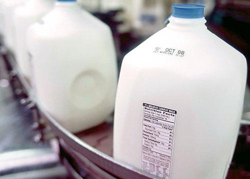 Factory gallon milk on conveyor