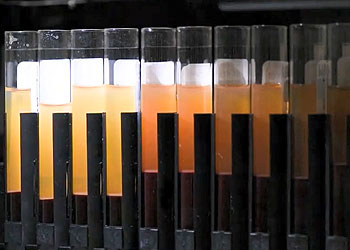 blood buffy coat vial examples