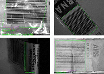cognex software automatic bag tag reading examples