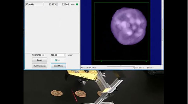 DS1000 3D Sensor Performing Volume Measurements
