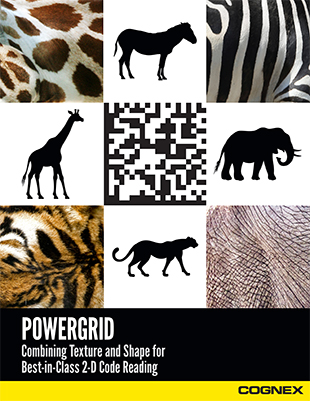 Whitepaper_PowerGrid_EN