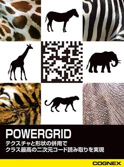 POWERGRID WHITEPAPER