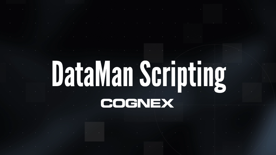 DataMan Scripting