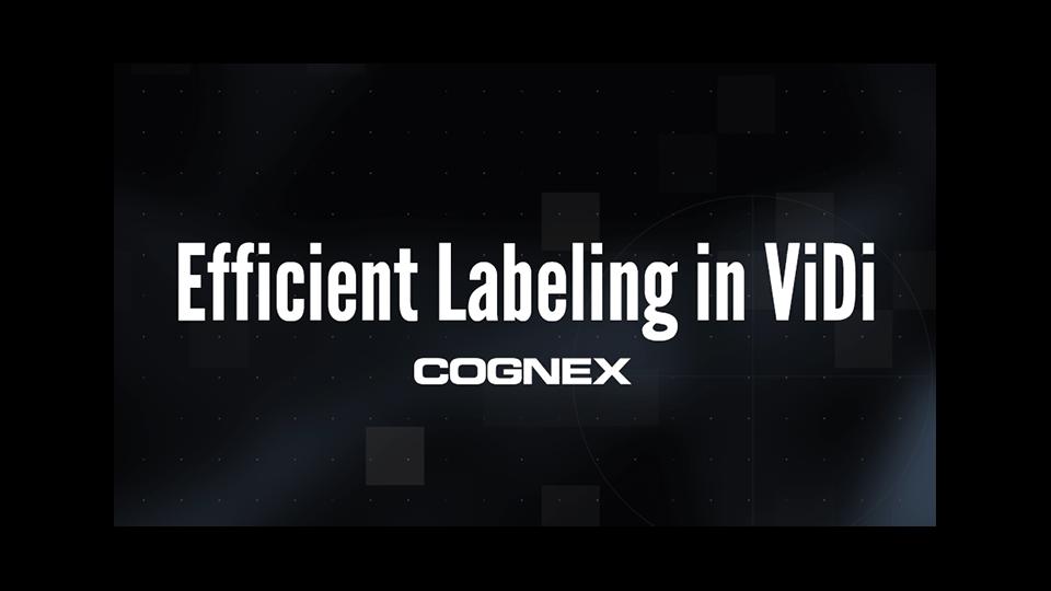 Efficient Labeling in In-Sight ViDi